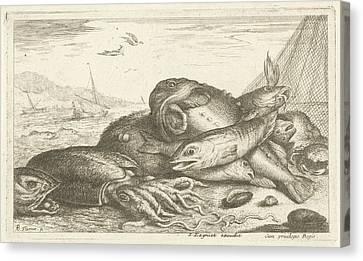 Fishes And A Squid, Albert Flamen, Jacques Lagniet Canvas Print