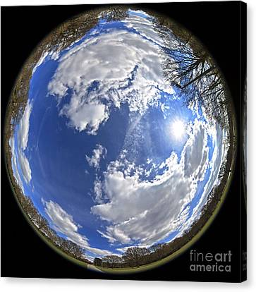 Fisheye Park Canvas Print by Jane Rix