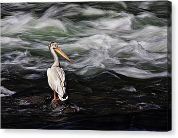Fishing At Lehardy Rapids Canvas Print