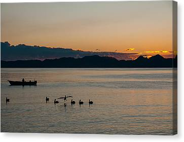 Fishing At Sunrise Canvas Print by Vernon Rosson