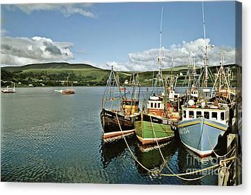 Fishing Boats At Uig Skye Scotland 1994 Canvas Print by David Davies