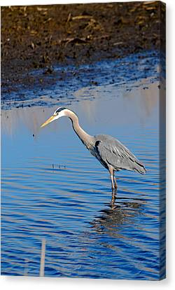 Fishing Canvas Print by Gary Wightman