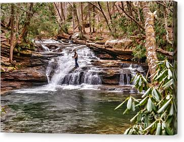 Fishing Mill Creek Falls In West Virginia Canvas Print by Dan Friend