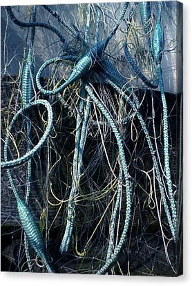 Fishing Net Play   Canvas Print by Colette V Hera  Guggenheim