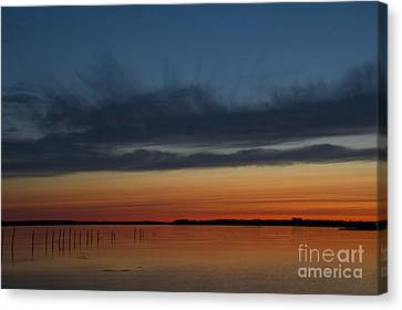 Fishing Weirs  Canvas Print by Alana Ranney