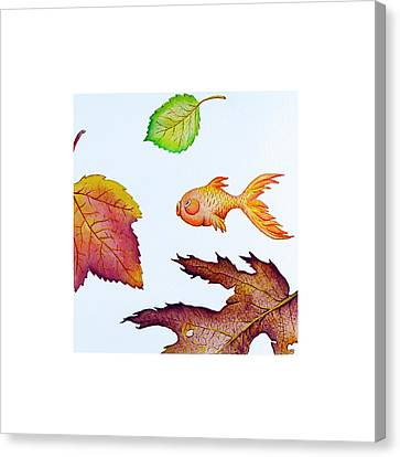 Fishsalad 4 Canvas Print by Laura Dozor