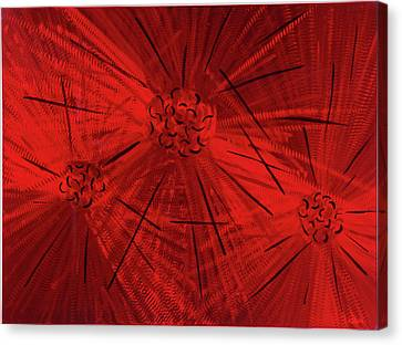 Fission II Canvas Print by Rick Roth