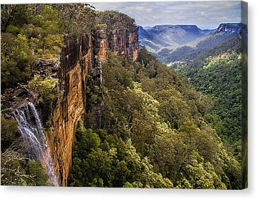 Kangaroo Canvas Print - Fitzroy Falls In Kangaroo Valley Australia by David Smith