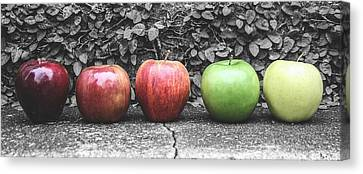 Five Apples  Canvas Print