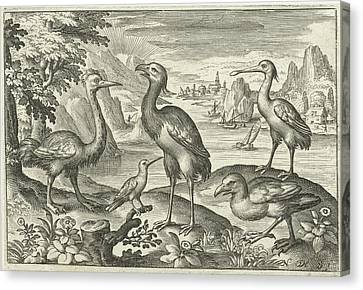 Five Birds Including Spoonbill, Nicolaes De Bruyn Canvas Print by Nicolaes De Bruyn