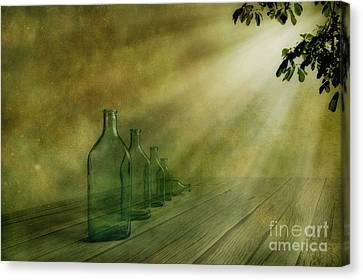 Five Bottles Canvas Print by Veikko Suikkanen