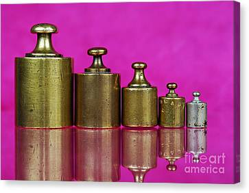 Five Copper Weights In A Row Canvas Print
