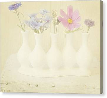 Five Little Bouquets Canvas Print by Bonnie Bruno