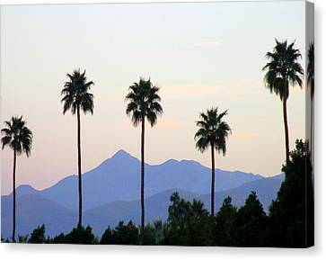 Five Palms Canvas Print by Randall Weidner