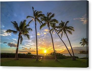Five Palms Sunset Canvas Print by Pierre Leclerc Photography