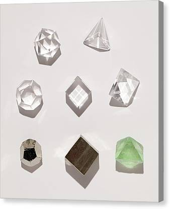 Platonic Canvas Print - Five Platonic Solids With 3 Natural Forms by Paul D Stewart
