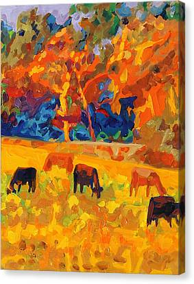 Five Texas Cows At Sunset Oil Painting By Bertram Poole Canvas Print