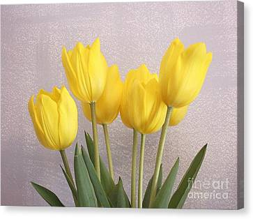 Five Yellow Tulips Canvas Print