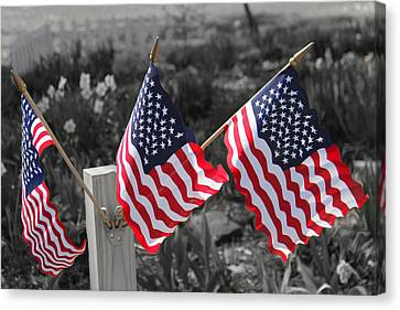 Flags Canvas Print by Mary Burr