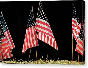 Flags On Float, July 4th Parade Canvas Print by Michel Hersen