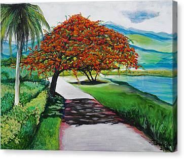 Flamboyan Canvas Print