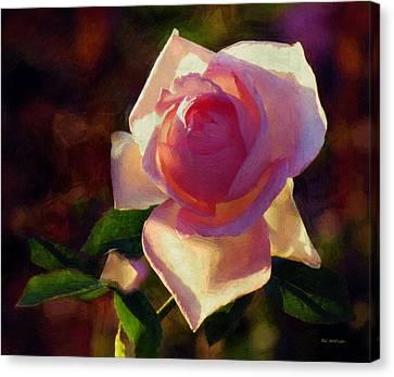 Flamboyant Canvas Print by RC deWinter