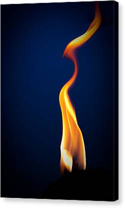 Flame Canvas Print by Darryl Dalton