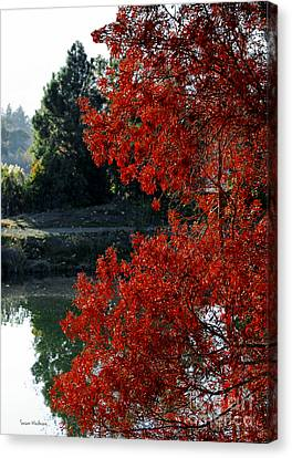 Flame Red Tree Canvas Print