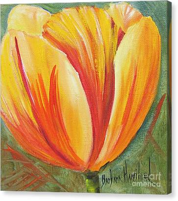 Flame Tulip By Barbara Haviland Canvas Print