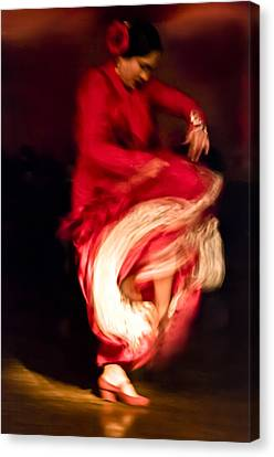 Flamenco Series 1 Canvas Print