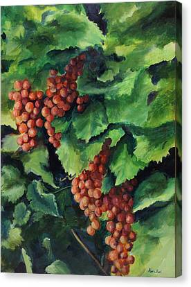 Grape Vines Canvas Print - Flames In The Vineyard by Maria Hunt