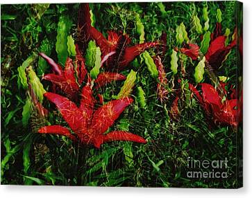 Canvas Print featuring the photograph Flames by Kathie Chicoine
