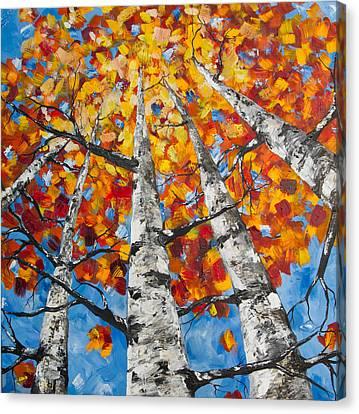 Flaming Aspens Canvas Print