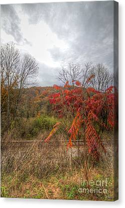 Hdr Landscape Canvas Print - Flaming Beauty by Sherri Duncan