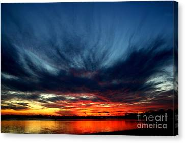 Flaming Hues Canvas Print by Theresa Willingham