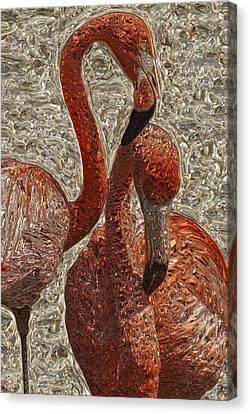Flamingo 4 Canvas Print by Jack Zulli