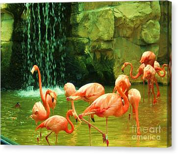Flamingo Canvas Print by Esther Rowden