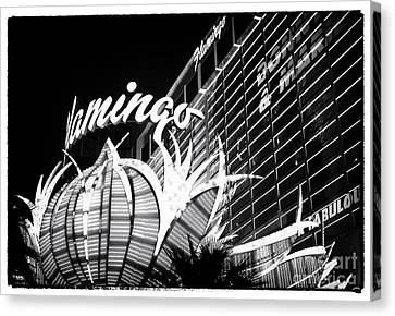 Flamingo Night View Canvas Print by John Rizzuto