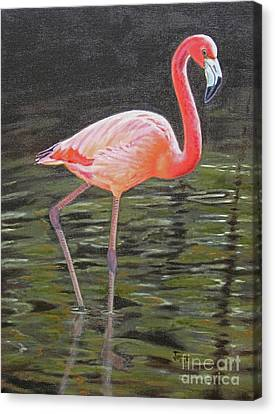 Canvas Print featuring the painting Flamingo On Parade by Jimmie Bartlett