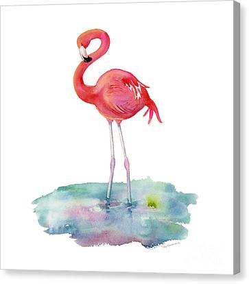 Flamingo Pose Canvas Print by Amy Kirkpatrick