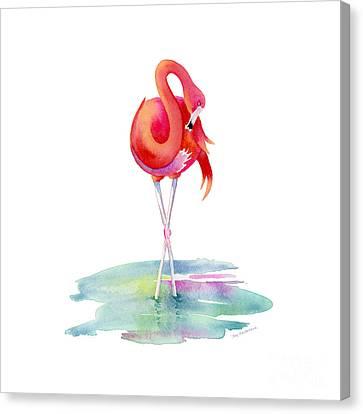 Flamingo Primp Canvas Print by Amy Kirkpatrick