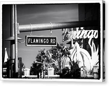 Flamingo Road Canvas Print by John Rizzuto