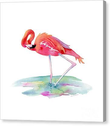 Flamingo View Canvas Print by Amy Kirkpatrick