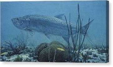 Flats Hunter Canvas Print by Randall Scott
