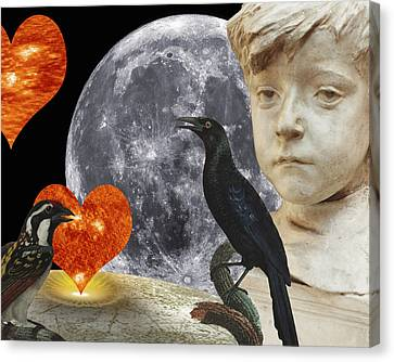 Fleeting Love  C2014 Paul Ashby Canvas Print by Paul Ashby