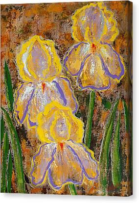 Fleur D' Iris Canvas Print by Margaret Bobb