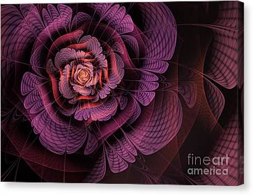 Fleur Pourpre Canvas Print by John Edwards