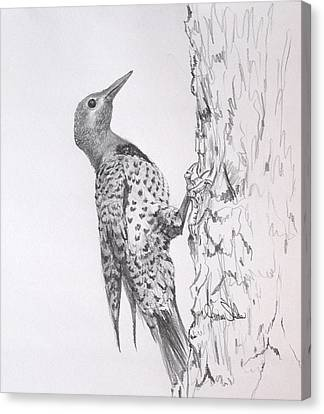 Flicker Canvas Print by James Skiles