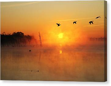 Flight At Sunrise Canvas Print