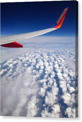 Flight Home Canvas Print